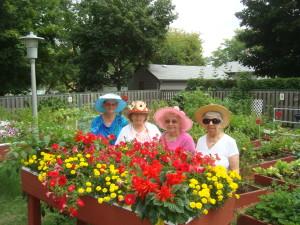 For older women in a flower garden