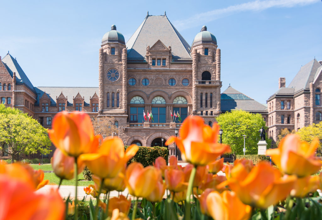 The front of Queen's Park, with tulips blossoming in the foreground.