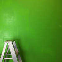A ladder sits beside a freshly-painted green wall.