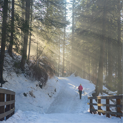A person walks along a snowy wooded  path
